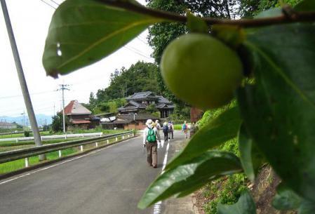 塩田宿 142