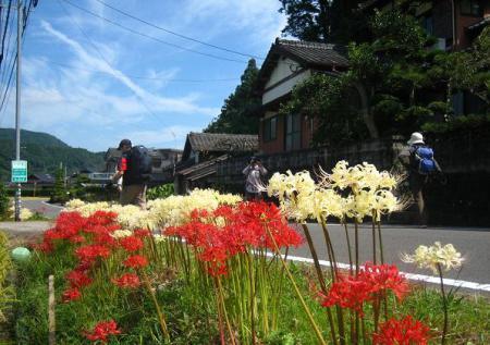 長崎街道 嬉野~塩田 074