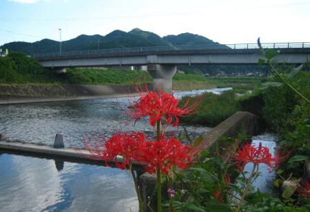 塩田川 015
