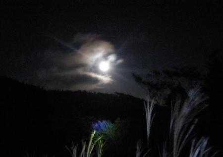 天山のお月さん 167