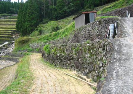 田栄隧道 367