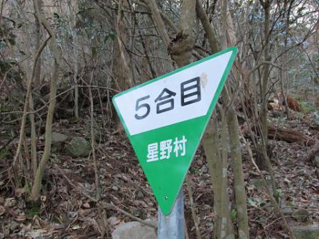鯛王金山 298