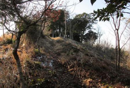 鯛王金山 351