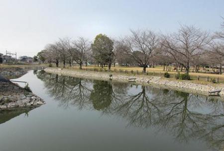 石丸山公園 054