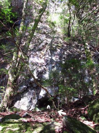 多良岳 158