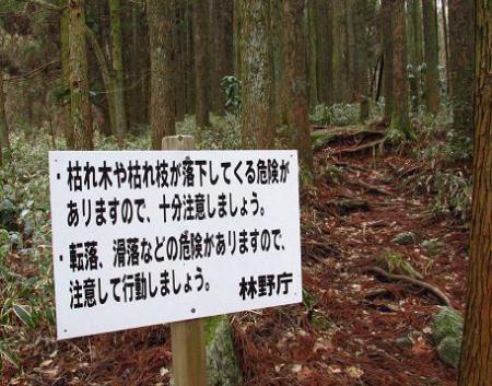 井原山とムクドリ 011