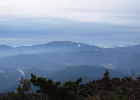 井原山とムクドリ 072
