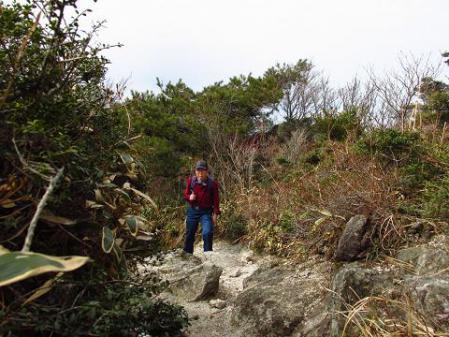井原山とムクドリ 069