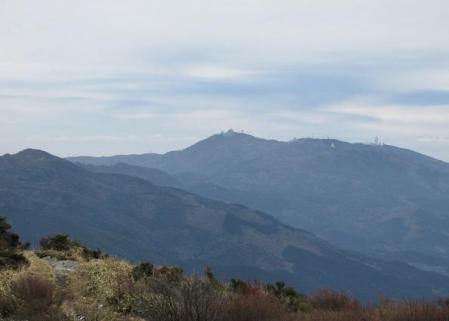 井原山とムクドリ 100