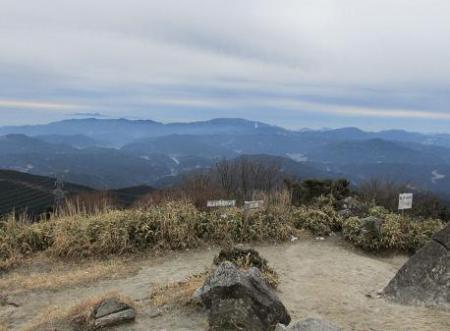 井原山とムクドリ 092