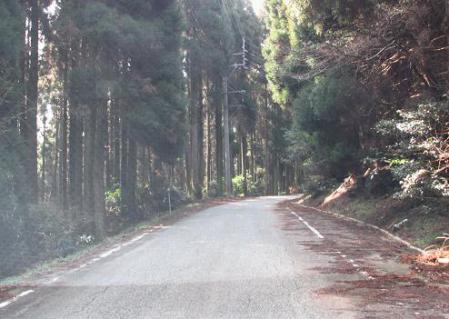 八幡岳 017