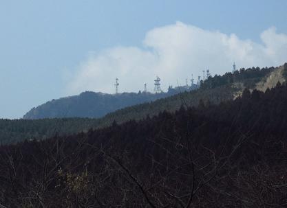 八幡岳 014