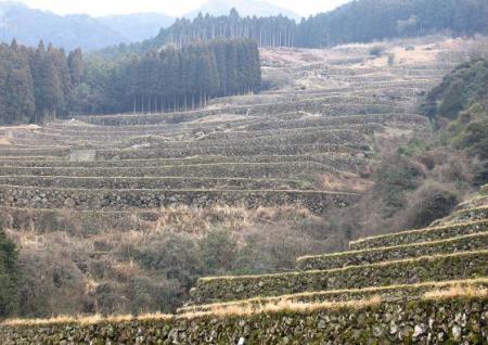 八幡岳 159