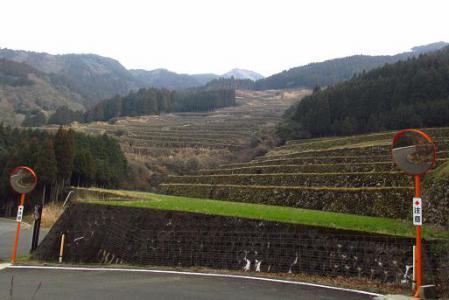 八幡岳 151