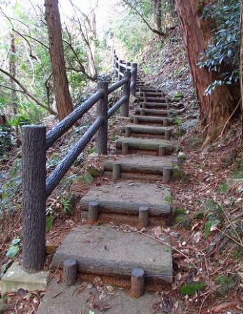 八幡岳 199