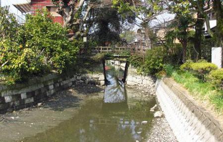 早春の柳川 069