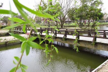 石丸山公園 026