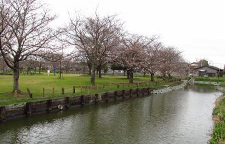 石丸山公園 075