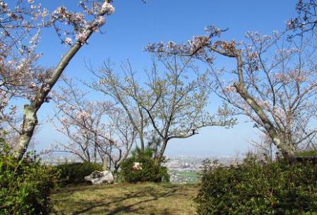 写真展と清水の桜 007