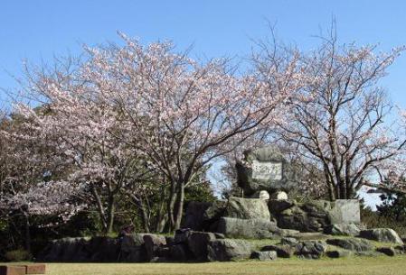 写真展と清水の桜 053
