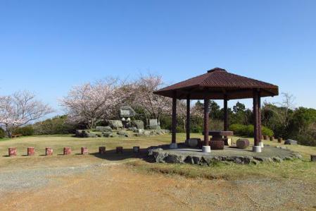 写真展と清水の桜 034