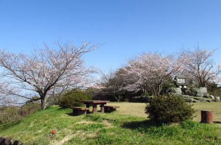 写真展と清水の桜 052