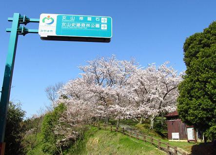 写真展と清水の桜 055
