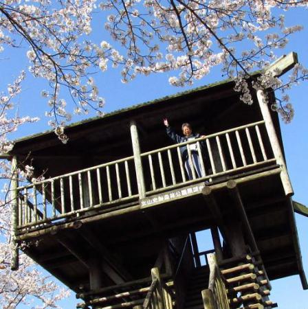 写真展と清水の桜 078