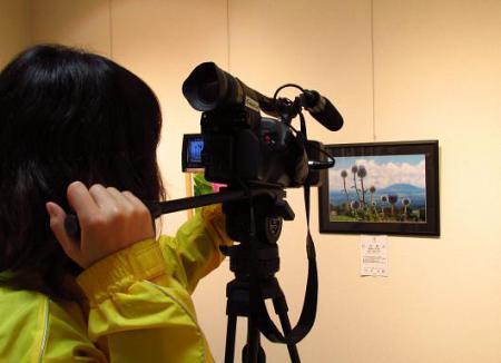 写真展と清水の桜 190
