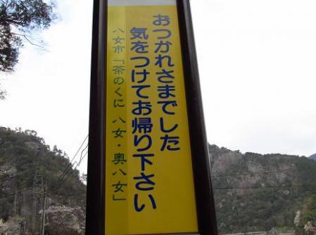日向神ダム桜 312