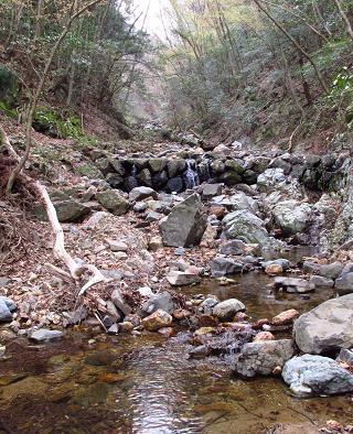 カラ迫岳 062