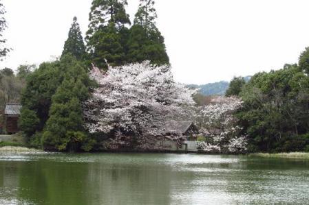 カラ迫岳 354