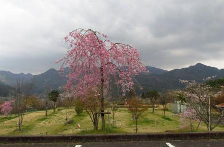 カラ迫岳 378