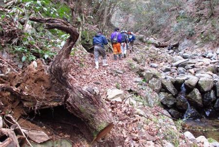 カラ迫岳 079