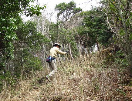 カラ迫岳 234