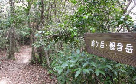 小岱山 ツツジ 073