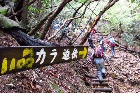 カラ迫岳 086