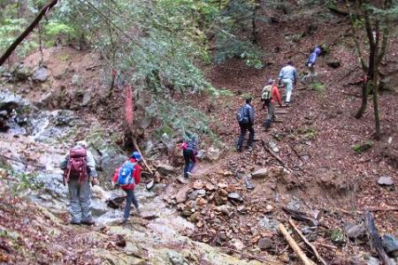 カラ迫岳 082