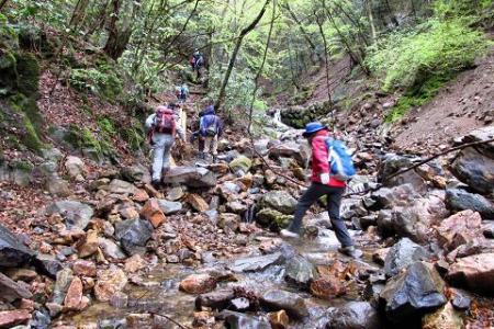 カラ迫岳 074