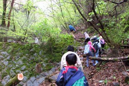 カラ迫岳 065