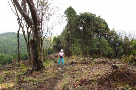 カラ迫岳 105
