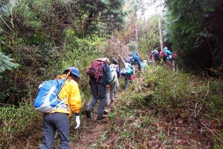 カラ迫岳 113