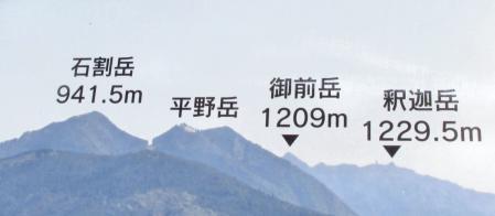 中山黒木藤ハイノキ 225