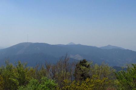 井原山 074