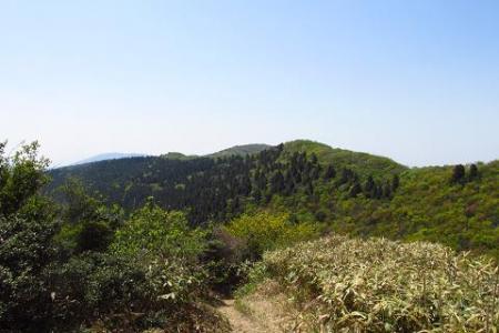 井原山 112