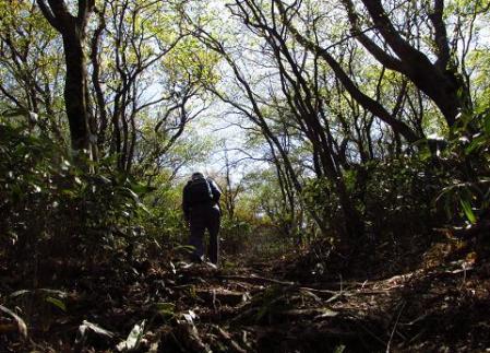 井原山 163
