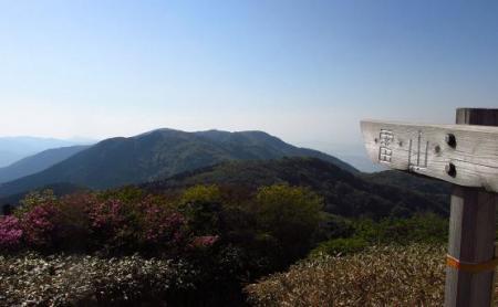 井原山 272