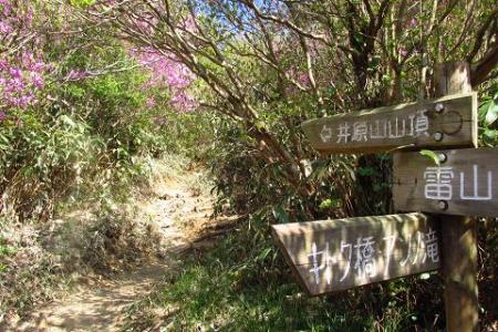 井原山 254