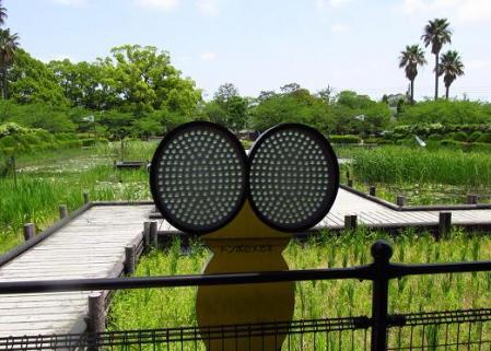 甲の公園 058