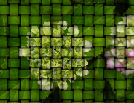 足湯と紫陽花 041